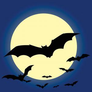 bats_flying_cartoon